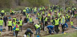 More than 800 people participated in the Plantada Popular al Francolí