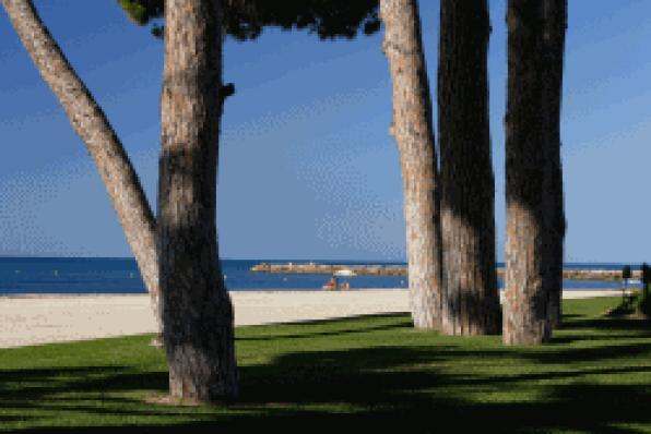 The beaches of Vilafortuny-l'Esquirol, Cavet and Prat dŽen Fores in Cambrils, receive the Blue Flag